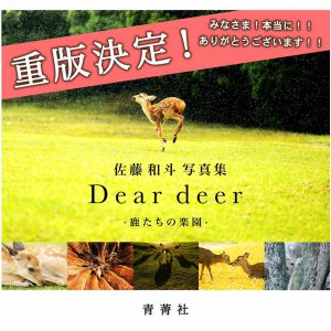「 Dear deer – 鹿たちの楽園 -」の重版が決定!