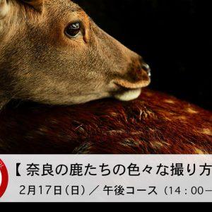 EOS学園 大阪校 2月の講座募集