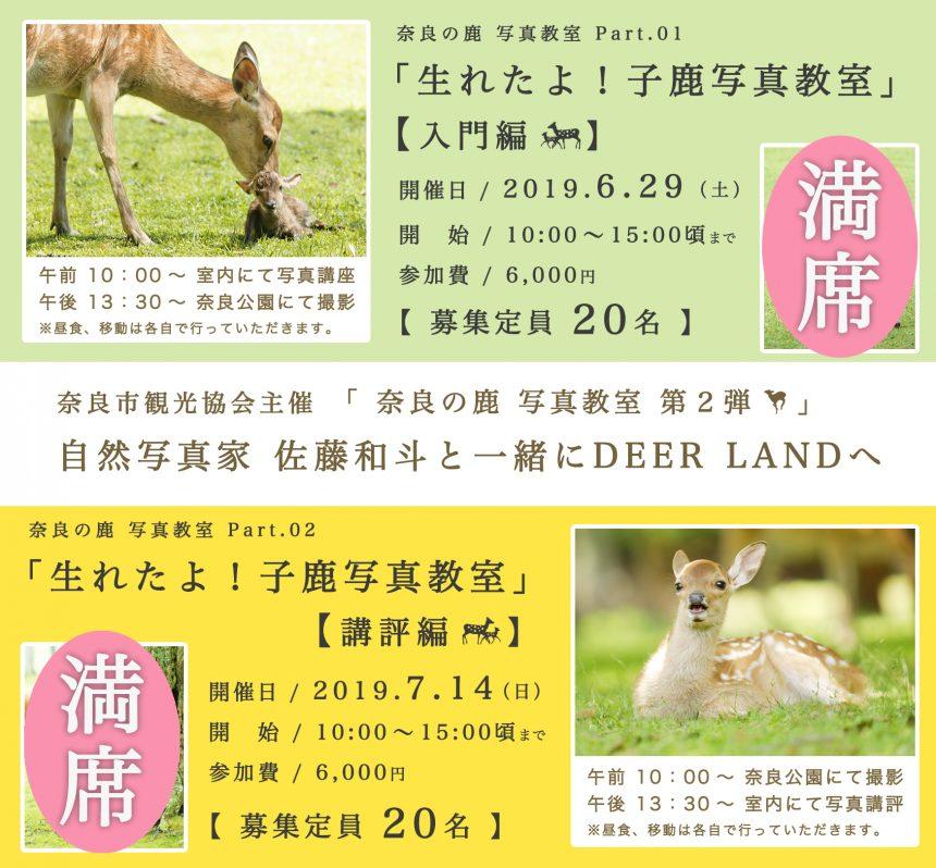 6/29・ 7/14 「子 鹿  撮 影 会 の お 知 ら せ 」