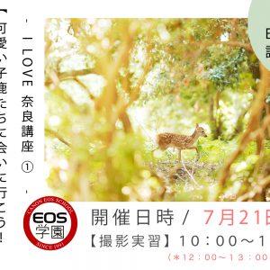 7月のEOS学園は「 可愛い子鹿撮影会 」受付中!