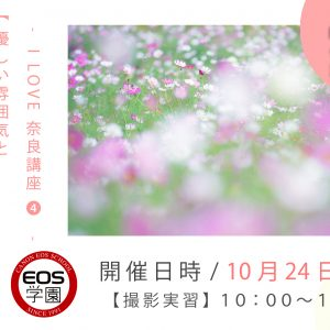 10月のEOS学園は「 優しい雰囲気と可愛いコスモスの撮り方講座 」受付中!
