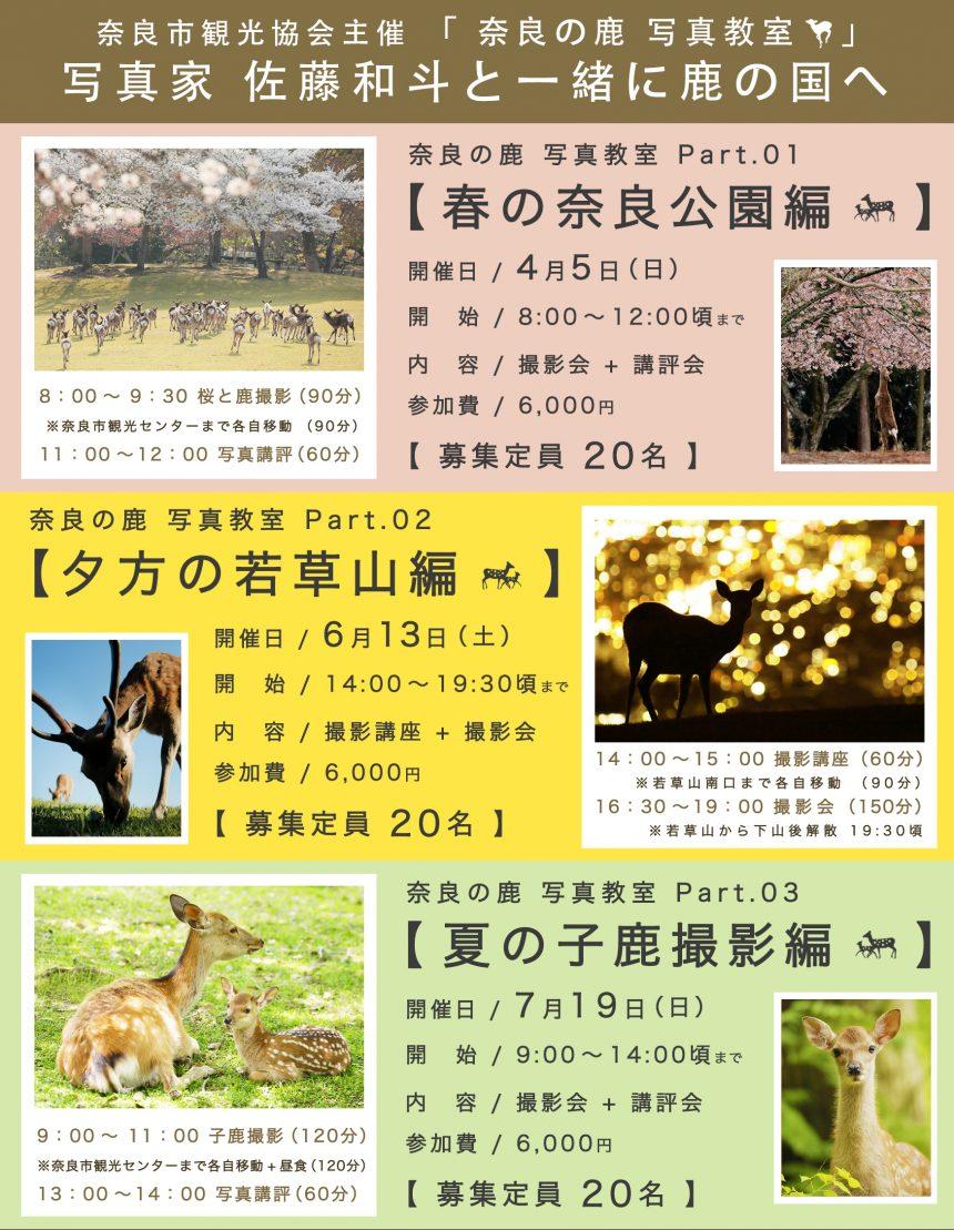 【 春&夏!奈 良 の 鹿 撮 影 会 の お 知 ら せ 】4/5(日)・ 6/13 (土)・ 7/19(日)