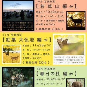 奈良市観光協会主催 【 奈良の鹿 特別 写真教室のお知らせ 】※只今満席。